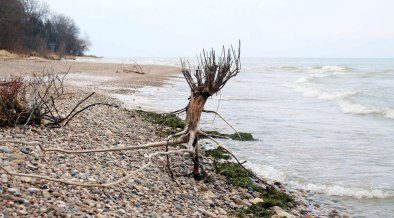 Lake Michigan's rise in northern Ozaukee County, WI ( © 2016 Elizabeth G Fagan)