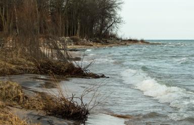 Lake Michigan washing away vegetation
